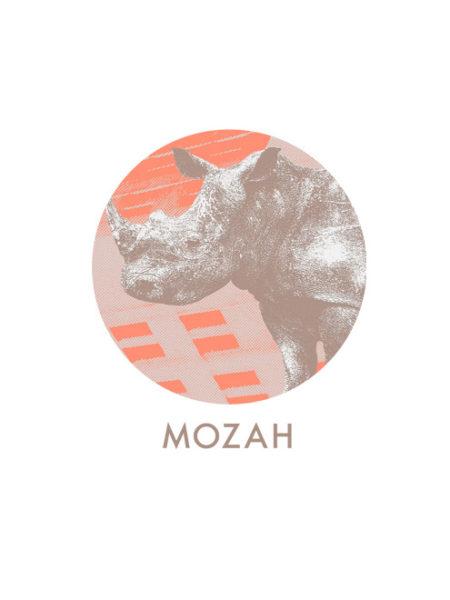 MOZAH – RHINO SHIRT WHITE – ECOLINE